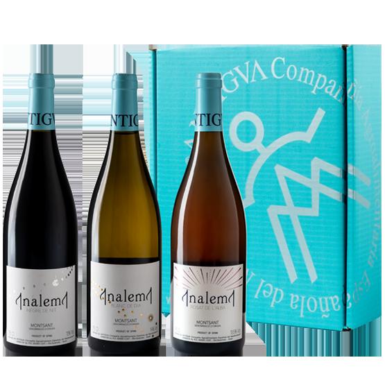 Estuche con la Colección de vinos Analema
