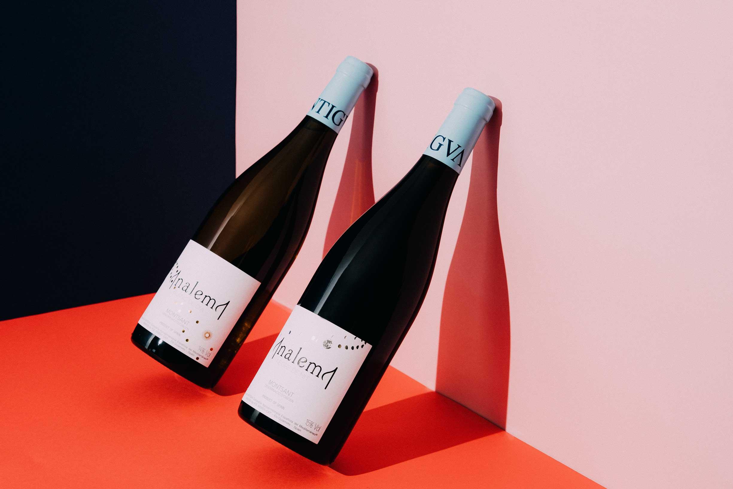Analema-vinos-de-diseño